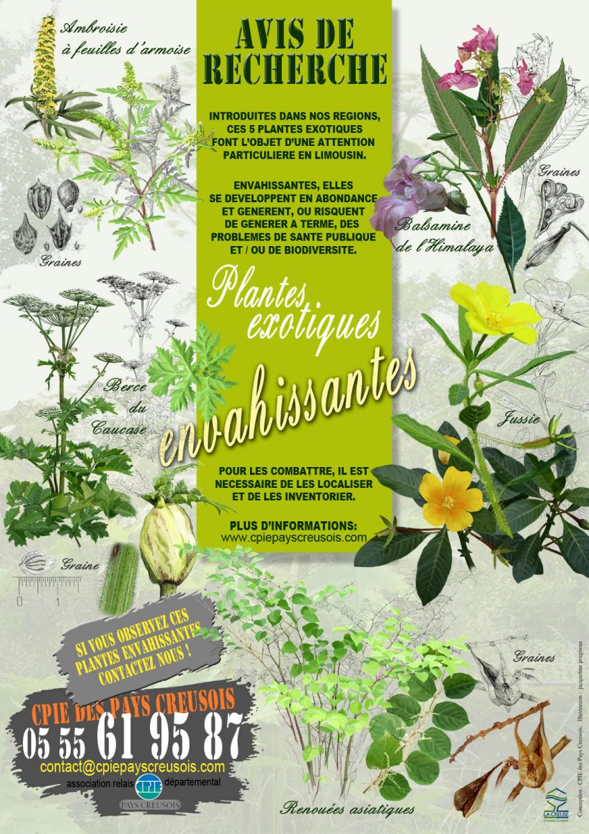 Techniciens m diateurs de rivi res outils de sensibilisation for Catalogue de plantes